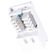 Single IDC RJ45 Shuttered Module Cat 6